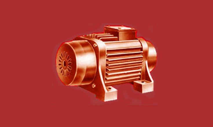 Electric rotary vibrator